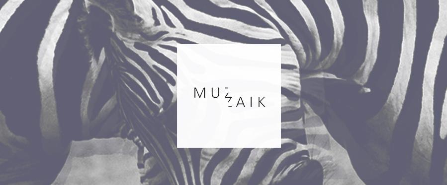 Faidel, deep afterhour, dubtechno, deep, techno, free,download, podcast, music,Muzaik, subspiele